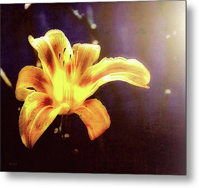 Tiger Lily On Waters Edge Metal Print by Bob Orsillo