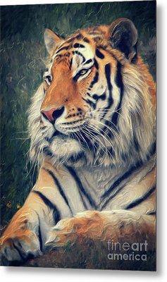 Tiger No 3 Metal Print