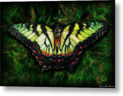 Metal Print featuring the photograph Tiger Swallowtail by Iowan Stone-Flowers