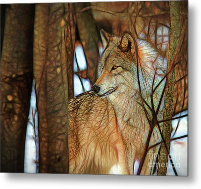 Timber Wolf Colorful Art Metal Print