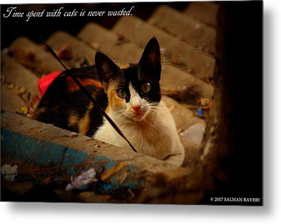 Time Spent With Cats. Metal Print