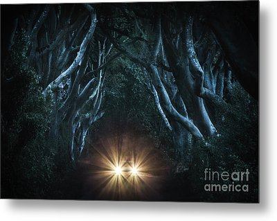 To The End Of The Night Metal Print