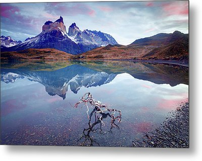 Towers Of The Andes Metal Print by Phyllis Peterson