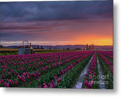 Tractor Waits For Morning Metal Print