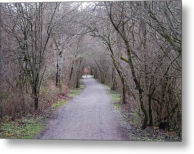 Trail Tunnel Metal Print by J D Banks