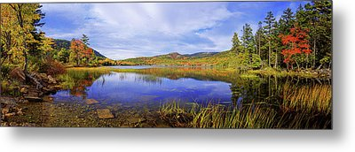 Tranquil Metal Print by Chad Dutson