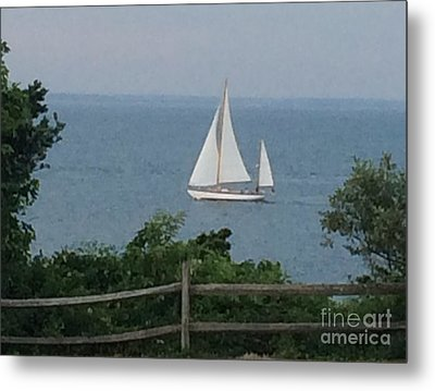 Tranquil Thoughts Metal Print