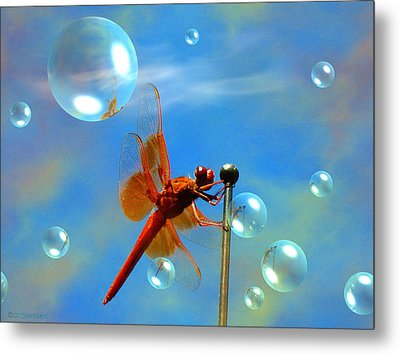 Transparent Red Dragonfly Metal Print by Joyce Dickens