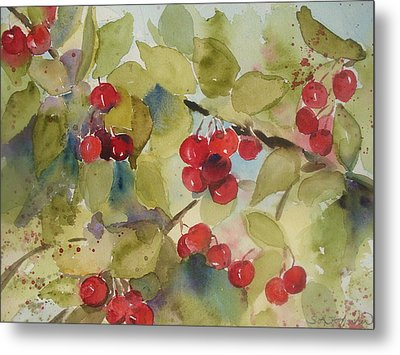 Traverse City Cherries Metal Print