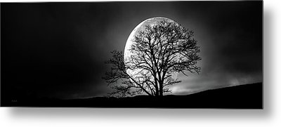Metal Print featuring the photograph Tree And Moon by Bob Orsillo