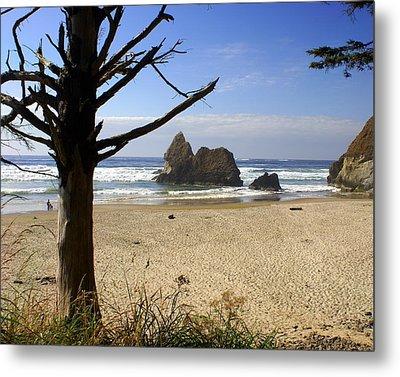 Tree And Ocean Metal Print by Marty Koch