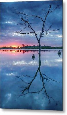 Tree In Silhouette Metal Print by Jae Mishra