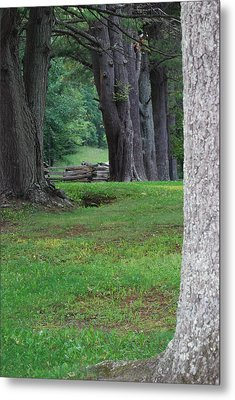 Metal Print featuring the photograph Tree Line by Eric Liller