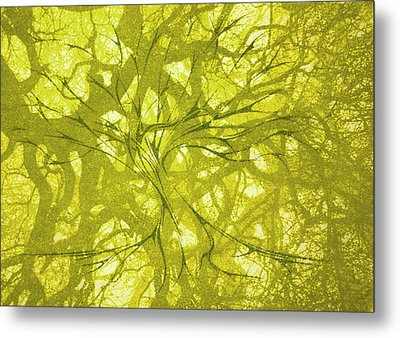 Metal Print featuring the mixed media Tree Of Life by Rachel Hames