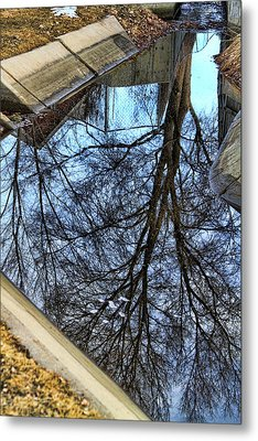 Tree Reflection From No Where Photography Image Metal Print by James BO  Insogna