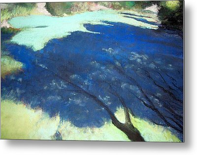 Tree Shadows Metal Print by Anita Stoll