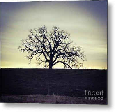 Tree5 Metal Print