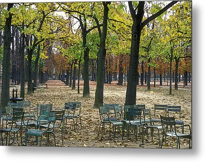 Trees And Empty Chairs In Autumn Metal Print