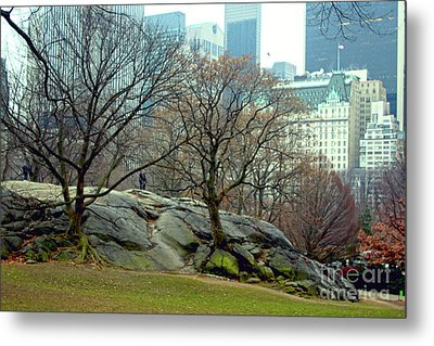 Trees In Rock Metal Print