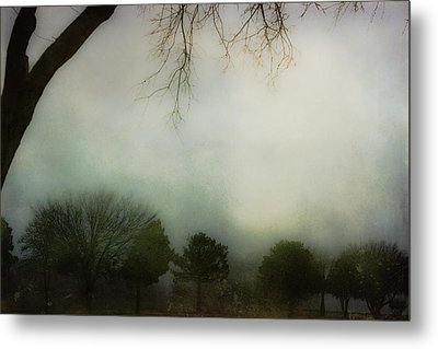 Trees In The Mist Metal Print