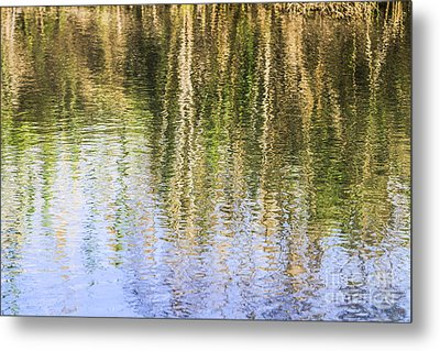 Trees Reflect In Water  Metal Print by Vladi Alon