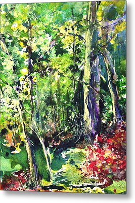 Trees Metal Print by Robin Miller-Bookhout