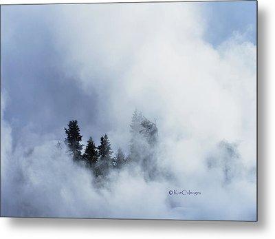 Trees Through Firehole River Mist Metal Print by Kae Cheatham