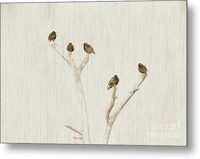 Treetop Starlings Metal Print by Benanne Stiens