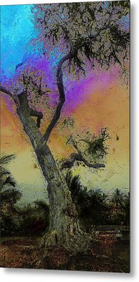 Metal Print featuring the photograph Trembling Tree by Lori Seaman