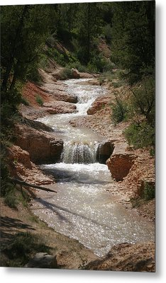 Metal Print featuring the photograph Tropic Creek by Marie Leslie