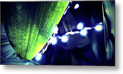 Metal Print featuring the digital art Tropical Night by Mindy Newman