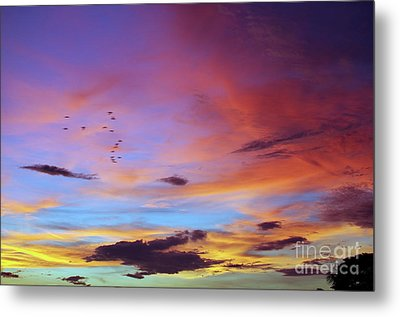 Tropical North Queensland Sunset Splendor  Metal Print