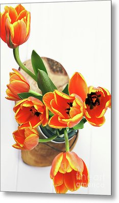 Metal Print featuring the pyrography Tulips by Stephanie Frey