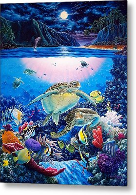 Turtle Bay Metal Print by Daniel Bergren