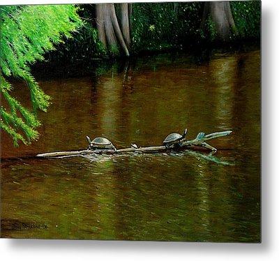Turtle Log Spa Metal Print by Doug Strickland