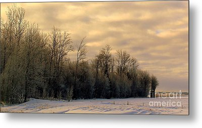 Twilight Metal Print by Elfriede Fulda