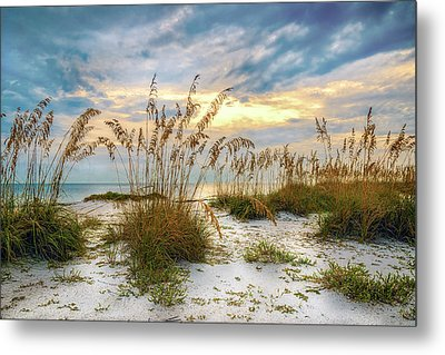 Twilight Sea Oats Metal Print