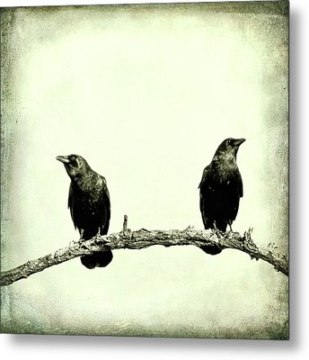 Two Birds One Branch Texture Square Metal Print