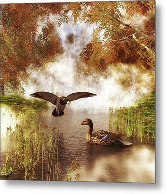 Two Ducks In A Pond Metal Print