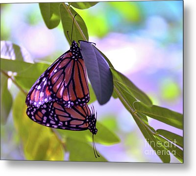 Two Hearts Beat As One Metal Print by Robyn King