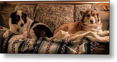 Two On The Couch Metal Print by Mick Anderson
