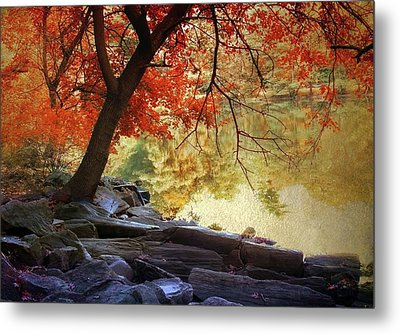 Under The Maple Metal Print by Jessica Jenney