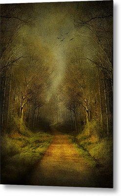 Unknown Footpath Metal Print by Svetlana Sewell