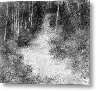 Up Into The Woods Metal Print