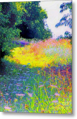 Uphill In The Meadow Metal Print by Shirley Moravec