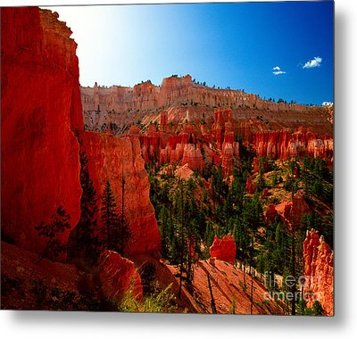 Utah - Navajo Loop Metal Print by Terry Elniski