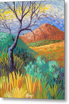 Van Gogh In Thefranklins Metal Print by Candy Mayer