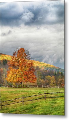Metal Print featuring the photograph Vermont Fall Colors After The Rain by Jeff Folger