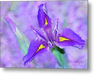 Metal Print featuring the photograph Vibrant Iris On Purple Bokeh By Kaye Menner by Kaye Menner