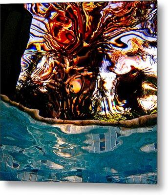 View Up 1 Metal Print by Barbara Kelley
